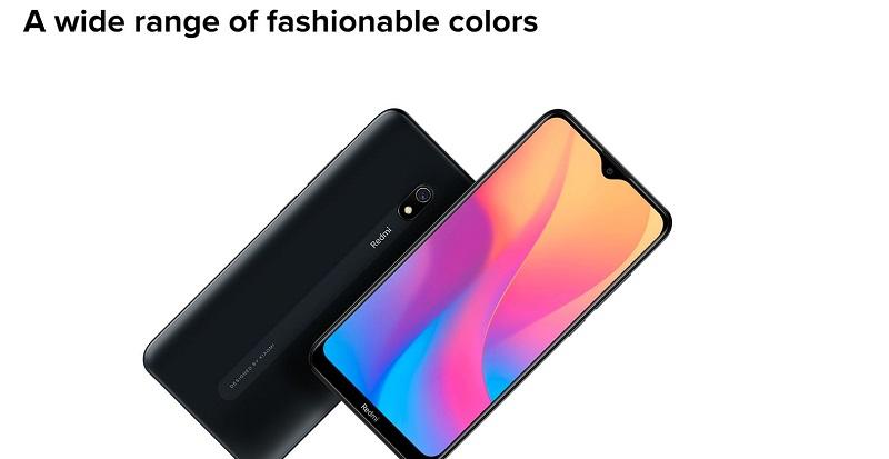 Fashionable Color Options