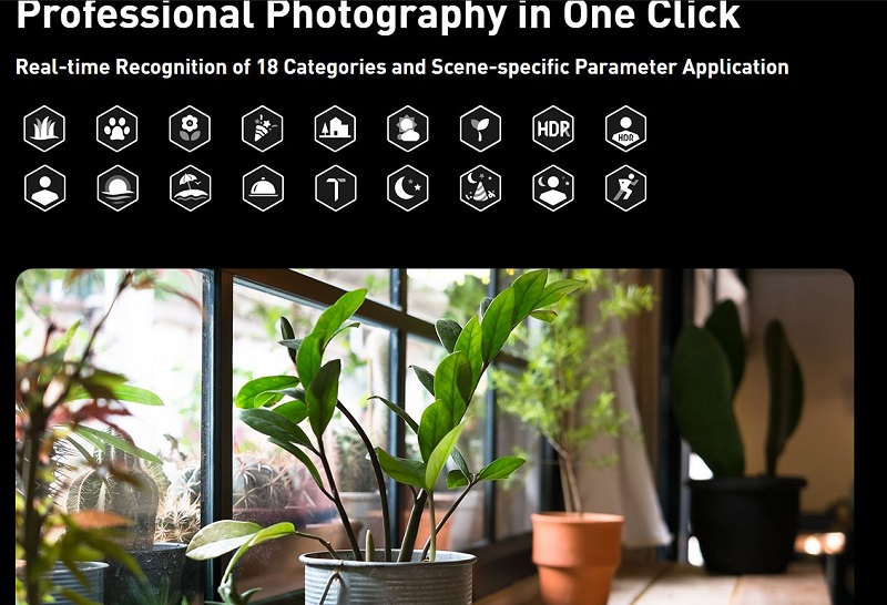 Professional Photography in one click