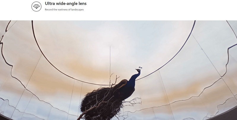 Ultra-Wide Back Camera